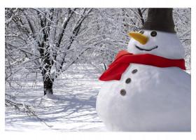 Набор аксессуаров для снеговика